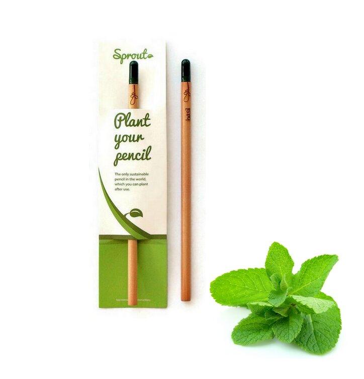 Plant Your Pencil – Mint