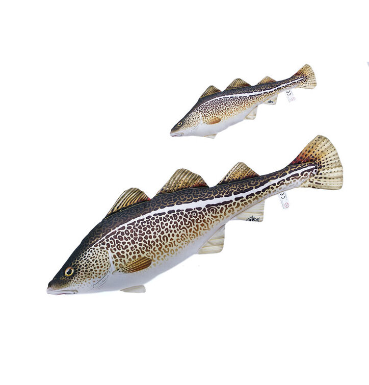 case by rainbow trout large pillow