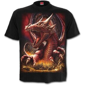 T-Shirt Dragon's Awakening