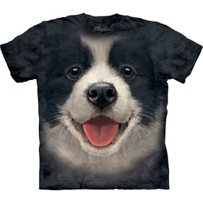 Black T-shirt Border Collie Puppy