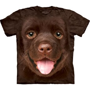 Brown T-shirt Labrador Puppy
