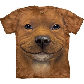 Brown T-shirt Pitbull Puppy