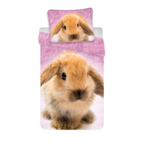 Photo Bedding Rabbit
