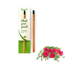 Plant Your Pencil - Flowering Flax